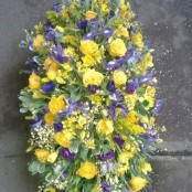 Yellow and purple Coffin Spray